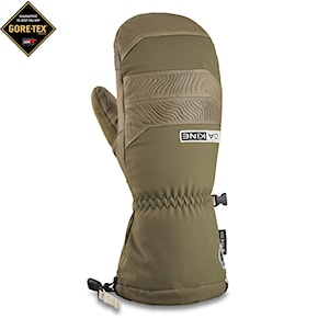 Gloves Dakine Team Excursion Gore-Tex Mitt louif paradis 2020/2021