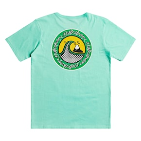 T-shirt Quiksilver Electric Roots Ss Youth cabbage 2021